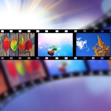 Вакансия в видеоотделе Разумного Человечества