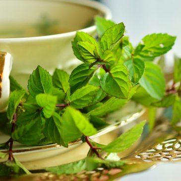 Противовирусный чай во время эпидемии