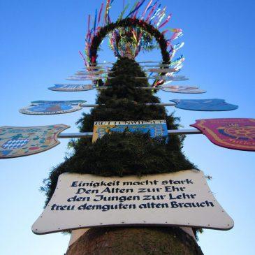 Праздник майского дерева в Баварии