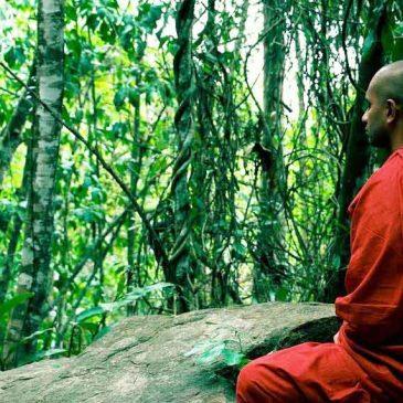 Притча о медитации