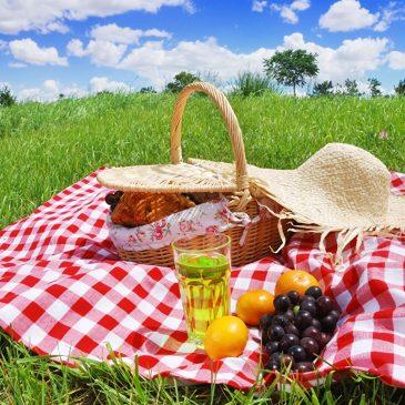 Пикник: не вредим природе